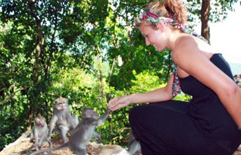 Lombok Nature Package 2 Days - 1 Night